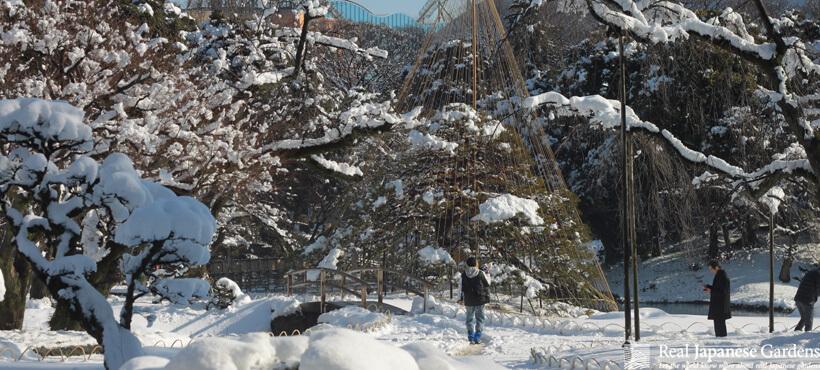 Koishikawa Korakuen in Winter